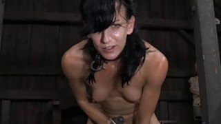 Gagged beauty with clamped teats receives wild fun